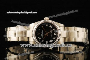 Oyster Perpetual No-Date 176236G SS Fluted Bezel Black Dial on Steel Bracelet - A2813